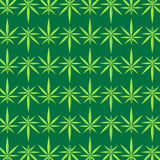 Green Marijuana Pattern Royalty Free Stock Images