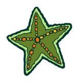Green marine starfish Stock Photo