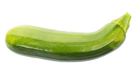 Green marrow Stock Image