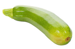 Green marrow Royalty Free Stock Images