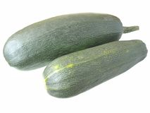Green marrows Stock Images