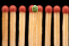 Green match standing in front of eight red wooden matches Stock Photos
