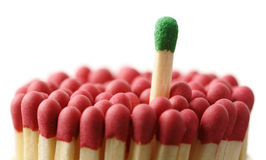 Green matchstick among red ones, out of the crowd Stock Images