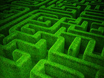 Green maze Royalty Free Stock Images