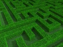 Green maze 3d illustration Royalty Free Stock Photos