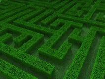 Green maze 3d illustration Stock Photo