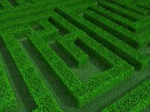 Green maze 3d illustration Stock Images