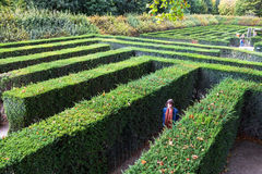 Green maze of Schloss Schonbrunn palace garden royalty free stock photo