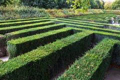 Green maze of Schonbrunn palace garden, Vienna Stock Photos
