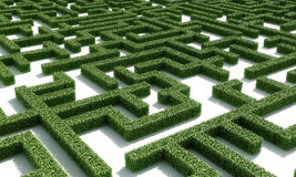 Green maze1. A labyrinth consisting of green bushes on a white plane Royalty Free Stock Image