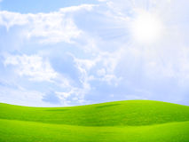 Green meadow. Abstract scene green grass on meadow under blue sparkling sky Royalty Free Stock Photo