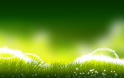 Green Meadow. Mystic Green Meadow Illustration. Perfect Copy Space. Some Mystic Lights Above the Ground. Fantasy Illustration Stock Image