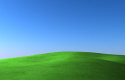 Green meadow. On background blue sky vector illustration