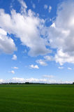 Green meadow. With blue sky and clouds Stock Photo