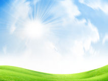 Green meadow Royalty Free Stock Images
