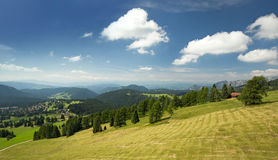 Green meadow in the Alps Stock Image