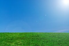 Green Meadow And The Blue Sky Stock Photography