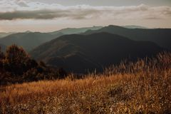 Green meadow on the background of the mountains stock images