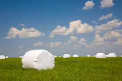 Green meadow with ballots of hay lying. Green meadow with balots of hay lying under cloudy blue sky Stock Photography