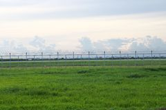 Green meadow blocked by the fences Royalty Free Stock Image