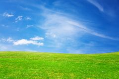 Green meadow and blue heaven. During sunny day stock image