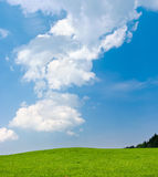 Green meadow and blue sky. Scene with green meadow and blue sky Stock Photos