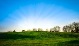 Green meadow and blue sky. Green beautiful meadow with a blue sky with sunbeams Stock Image