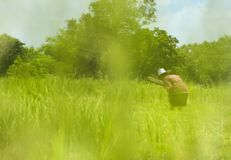 Green meadow with the blue sky. Green meadow with the blue sky with the farmer Royalty Free Stock Images