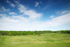 Green meadow and blue sky with forest Stock Images