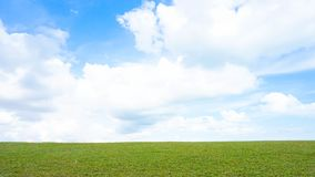 Green meadow and blue sky. Panoramic spring landscape and blue sky Royalty Free Stock Photos