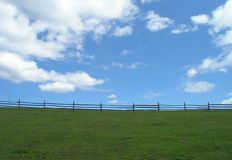 Green meadow and blue sky. Stock Images