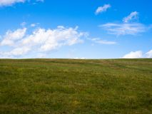 Green meadow and blue sky Stock Images