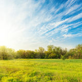 Green meadow and blue sky in sunset Royalty Free Stock Image
