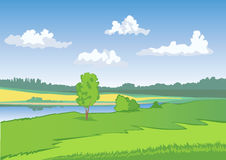 Green meadow with blue sky and white clouds. Countryside landscape. Open view, scene, space. Yellow field Stock Photography