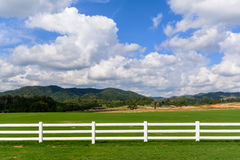 Green meadow with blue sky and white fence Stock Image