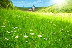 Green meadow on castle Karlstein background Stock Images
