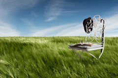 Green meadow with chair, old book, glasses, hat and umbrella Royalty Free Stock Image