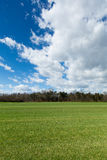 Green meadow with cloudscape Royalty Free Stock Images
