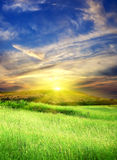 Green meadow with cloudy sky. On sundown Royalty Free Stock Photos
