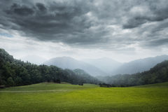Green meadow and cloudy sky Royalty Free Stock Image