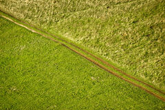 Green meadow diagonal tractor track Stock Photos