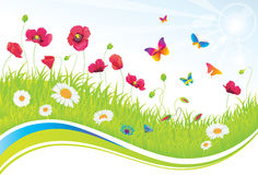 The Green Meadow with Flowers and Butterflies. Royalty Free Stock Image