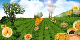 Green meadow with food famous in the Arab world Royalty Free Stock Photography