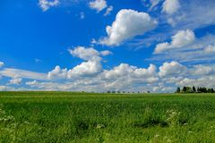 Landscape window, idyll with green meadow and wide sky. Landscape window, idyll with green meadow and wide blue sky royalty free stock photography