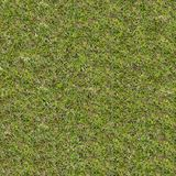 Green Meadow Grass. Seamless Tileable Texture. Stock Photography