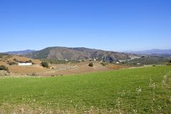 Green meadow and mountains of Andalusia Royalty Free Stock Image