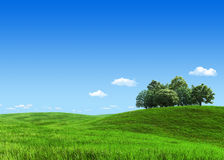Green meadow group of trees template stock photos