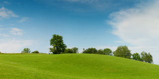Green meadow hill Stock Images