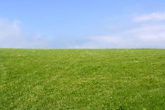 Green meadow horizon and blue sky. Tranquil landscape scene Royalty Free Stock Photo