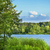 Green meadow and lake Stock Photos